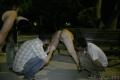 ぽちゃパイパンFカップ(22)夜の公園露出男性に囲まれる2